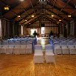 Chilford Hall Vineyard 2.jpg 2