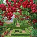 Barnsdale Gardens 3.jpg 20