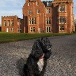 Dryburgh Abbey Hotel 6.jpg 2