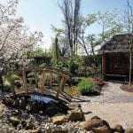 Barnsdale Gardens 7.jpg 17