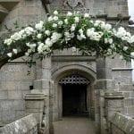 Pendennis Castle Pendennis Castle Flower 3
