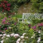 Pashley Manor Gardens 5.jpg 3