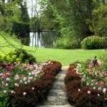 Pashley Manor Gardens 6.jpg 4