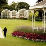 Birmingham Botanical Gardens & Glasshouses 2454a.jpg 1