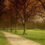 Buckinghamshire Golf Club 6.jpg 5