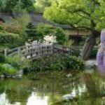 Hakone Estate and Gardens 4335a.jpg 1