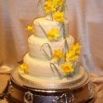 Celtic Cakes Studio 976.jpg 1