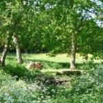 Church Farm 29.jpg 6