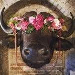 The Bell in Ticehurst 11.jpg 8