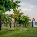 Three Choirs Vineyard 13.jpg 27