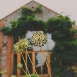 Eternal Images Photography Ltd Norfolk wedding venue, norfolk wedding photographer (4 of 510).jpg 3