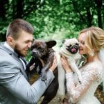 Runa Farm Runa Farm Dogs Weddings 10