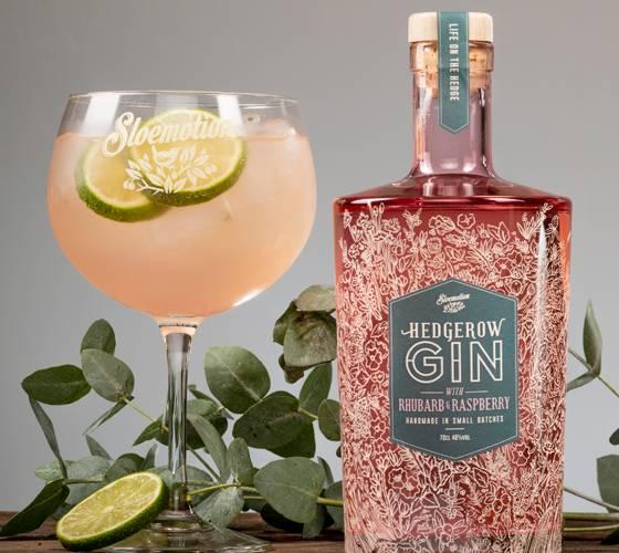 Sloemotion Hedgerow Gin - Rhubarb & Raspberry