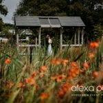 Knightor Winery ad wedding knightorwinery 24.jpg 4